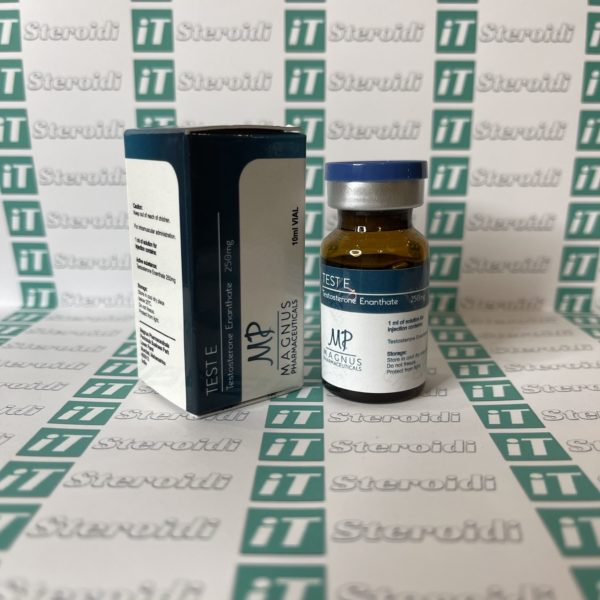Confezione Test E ( Testosterone Enanthate) 250 mg Magnus Pharmaceuticals